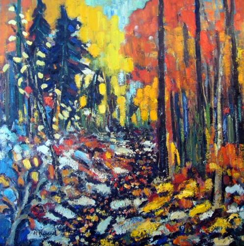 Cascades en couleurs 40x40
